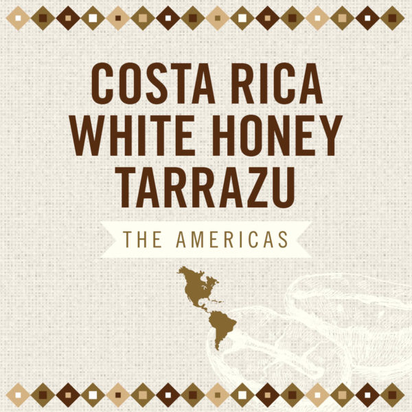 Costa Rica White Honey Tarrazu