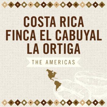 Costa Rica Finca El Cabuyal La Ortiga