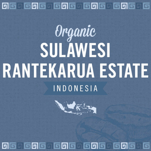 Organic Sulawesi Rantekarua Estate
