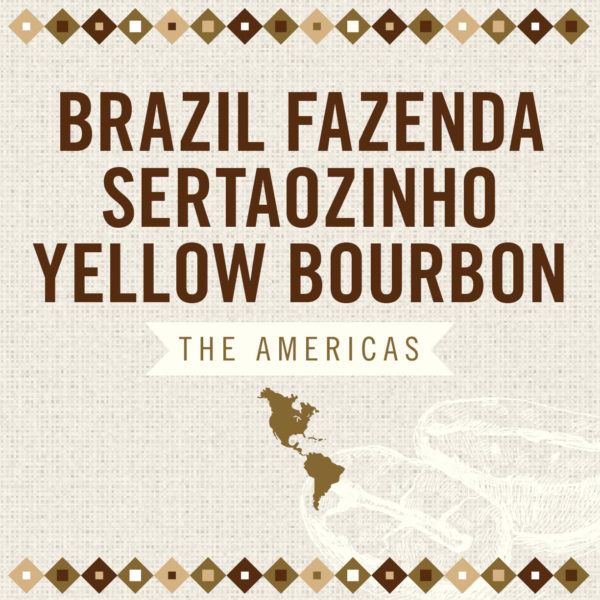 Brazil Fazenda Sertaozinho Yellow Bourbon