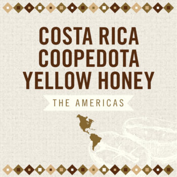 Costa Rica Coopedota Yellow Honey